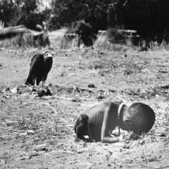 Muerte y miseria, dos desgracias parecidas