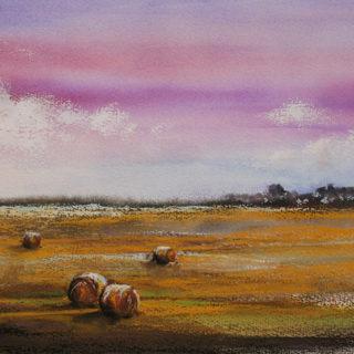 Haybale Fields - Oil Paint 2017