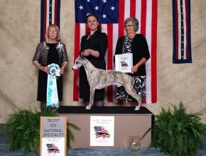 Select Dog at 2014 National
