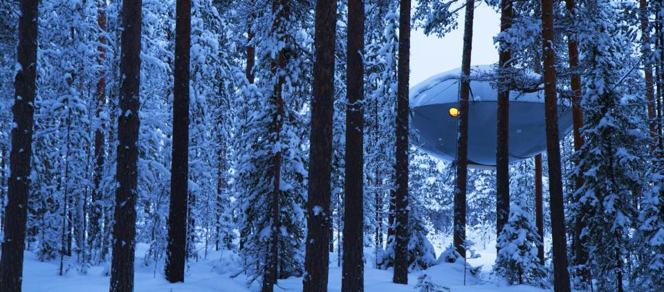 The Ufo, Treehotel