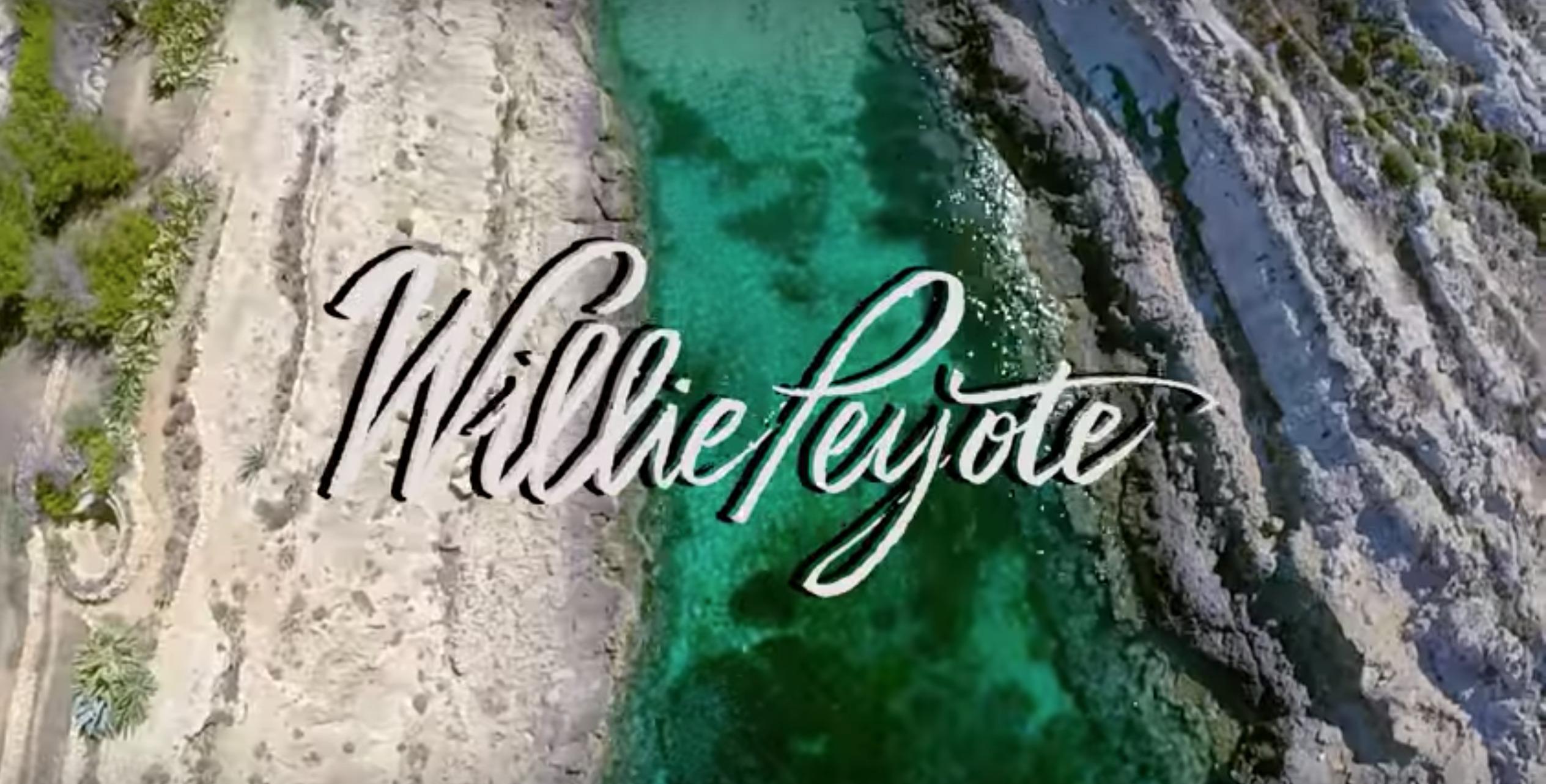 Willie Peyote, razzismo e fake news