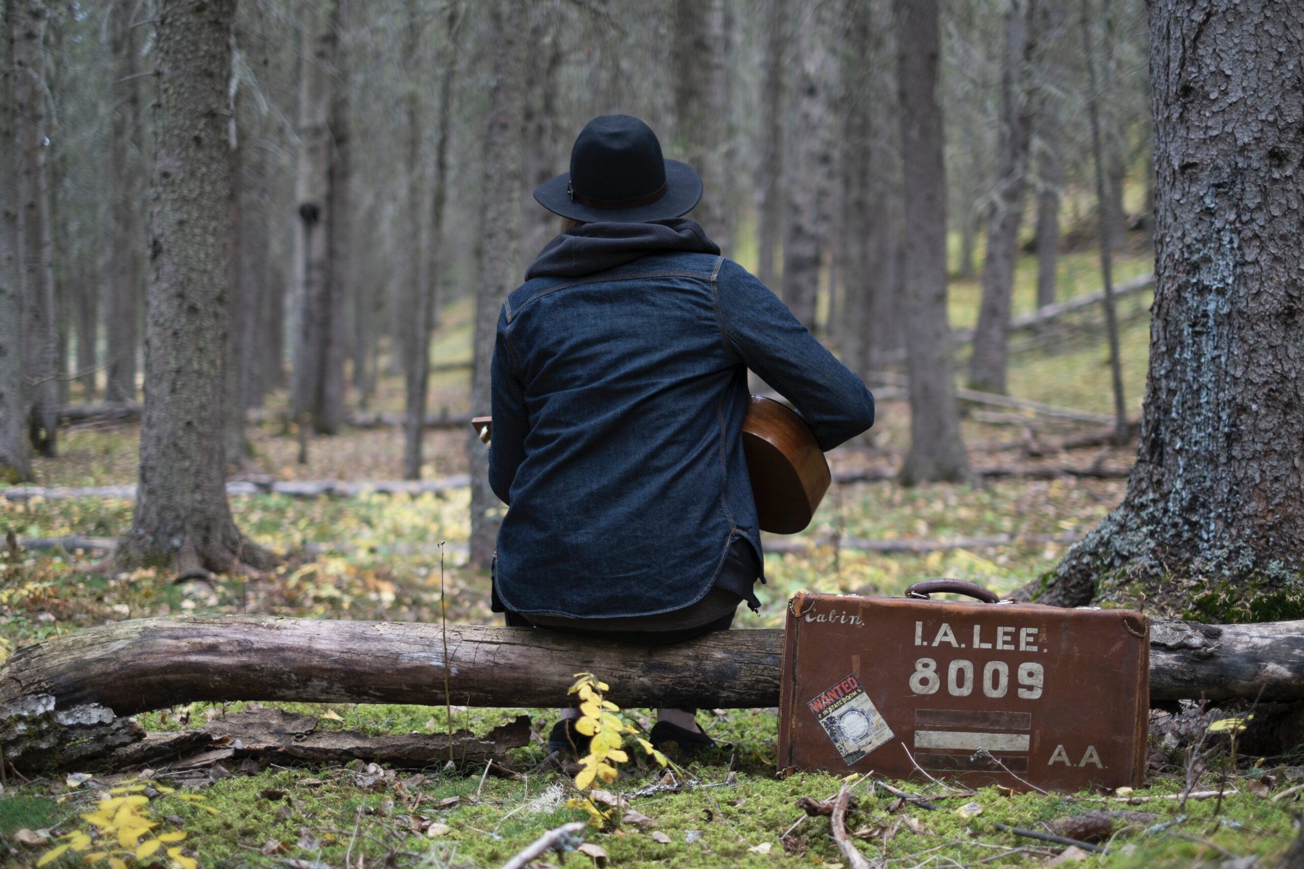 musica e terra