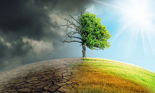 Disclosure on Climate Change is Nearly Mandatory