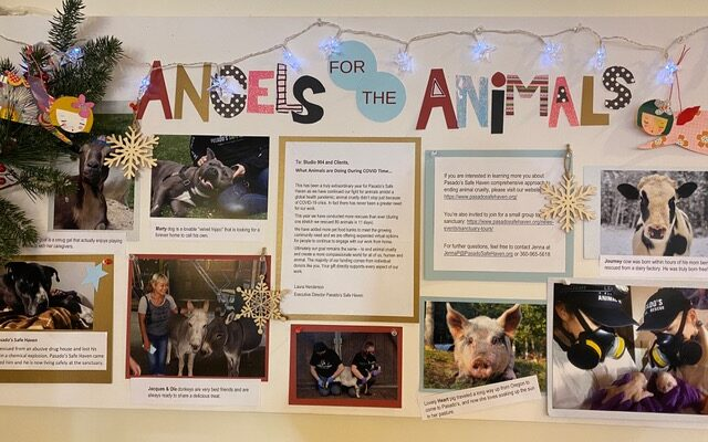 Angels for Animals 2021 Bulletin Board
