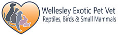 Wellesley Exotic Pet Vet | Richmond VA