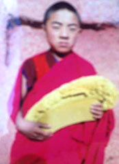 Samdrup, aged around 16, while at his monastery before his self-immolation. The picture was taken following a major religious assembly.
