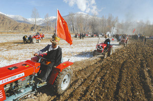 Tibetans ploughing the fields