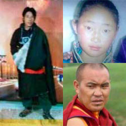 Tibet Brief January 2015