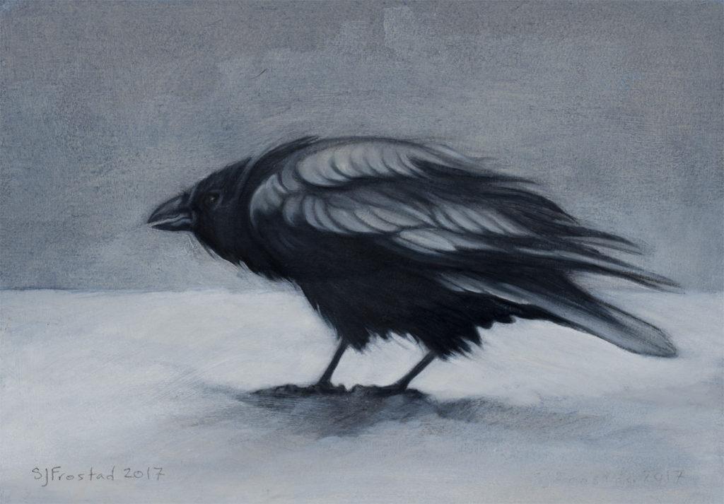 "Raven in Snow, 2017. Graphite & oil on art board, 5x7"". Sold"