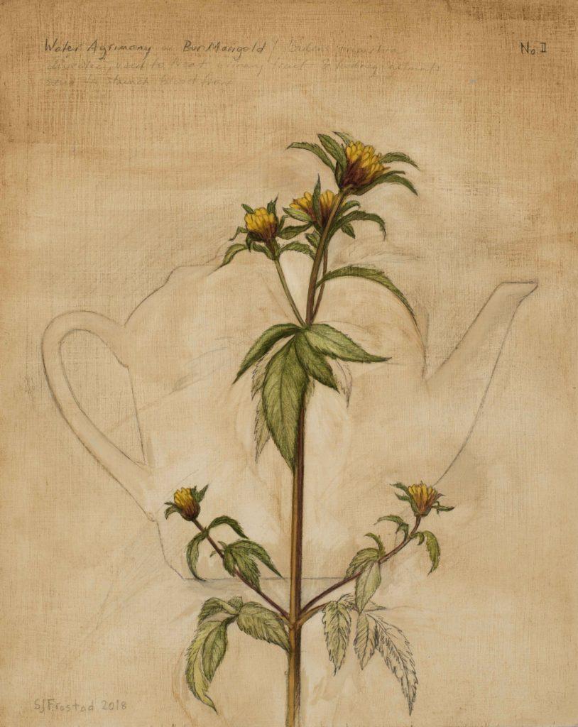 """Tea Leaves II, 2018. Graphite & oil on wood panel, 10x8"""" 300."""