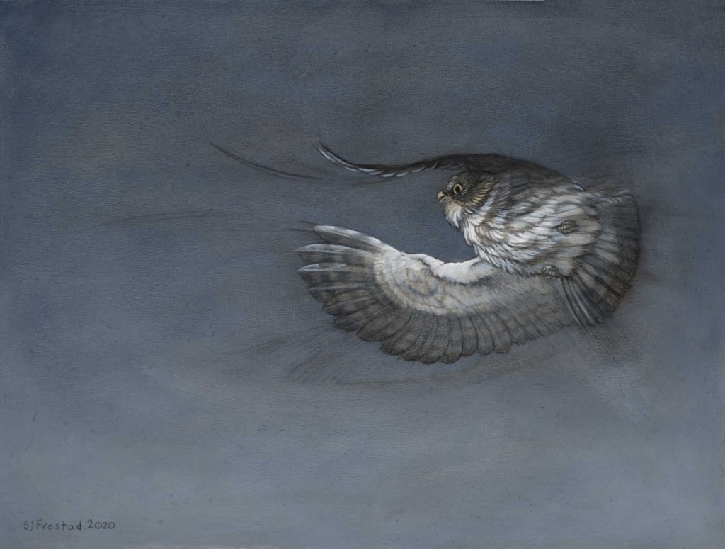 """Into the Dark, 2020. Graphite & oil on wood panel, 9x12"""" Sold"""