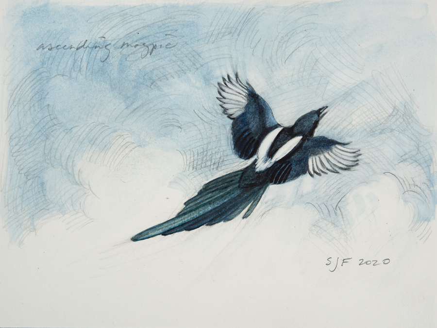 """Ascending Magpie, 2020. Mixed media on paper, 4x6"""" Sold"""