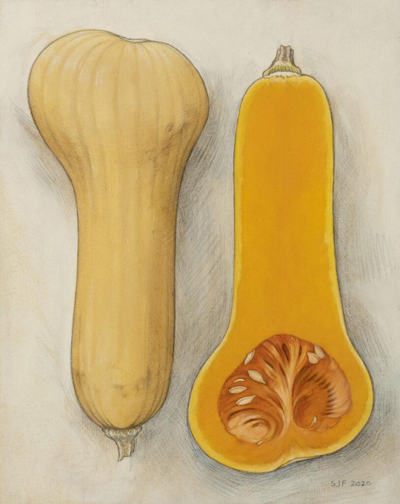 """Butternut Squash, 2020. Graphite & oil on art board, 10x8"""" 300."""