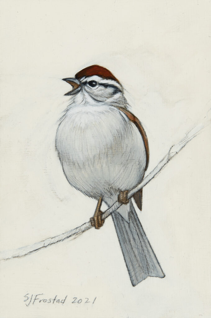 """Chipping Sparrow, 2021. Graphite & oil on art board, 6x4"""", Sold"""