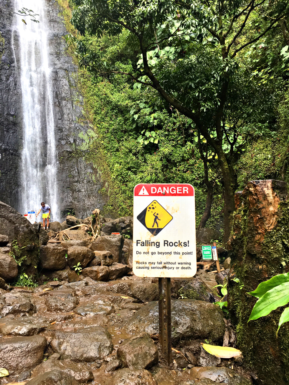 Manoa Falls (1 of 29)