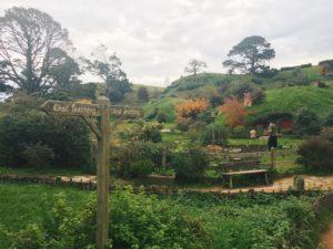 Hobbiton Movie Tour