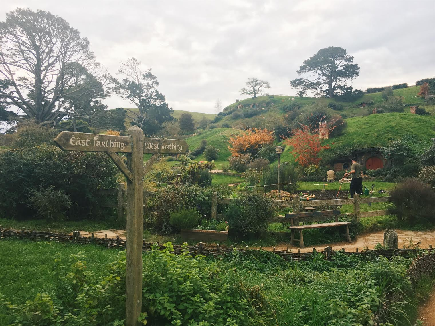 You are currently viewing Hobbiton Movie Tour