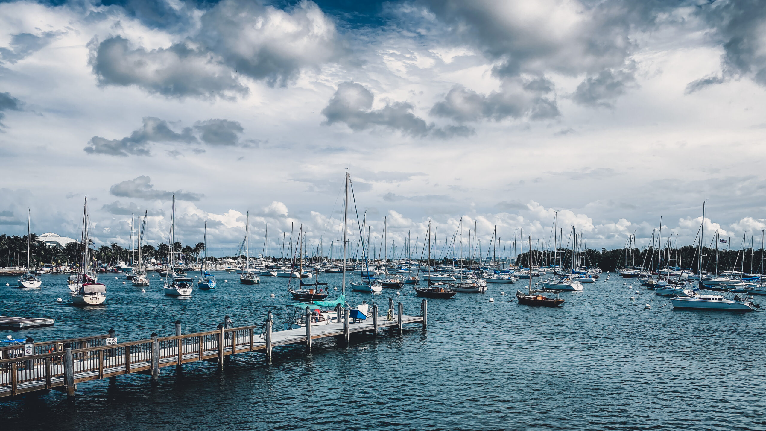 Buying a Sailboat: Our Next Adventure!