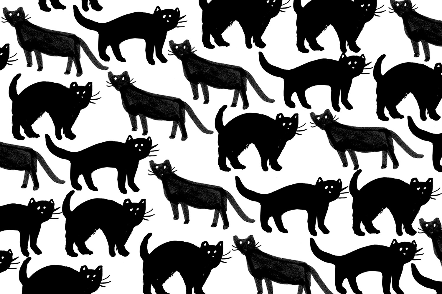 cats-desktop2