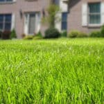 curb appeal Ames lawn care services
