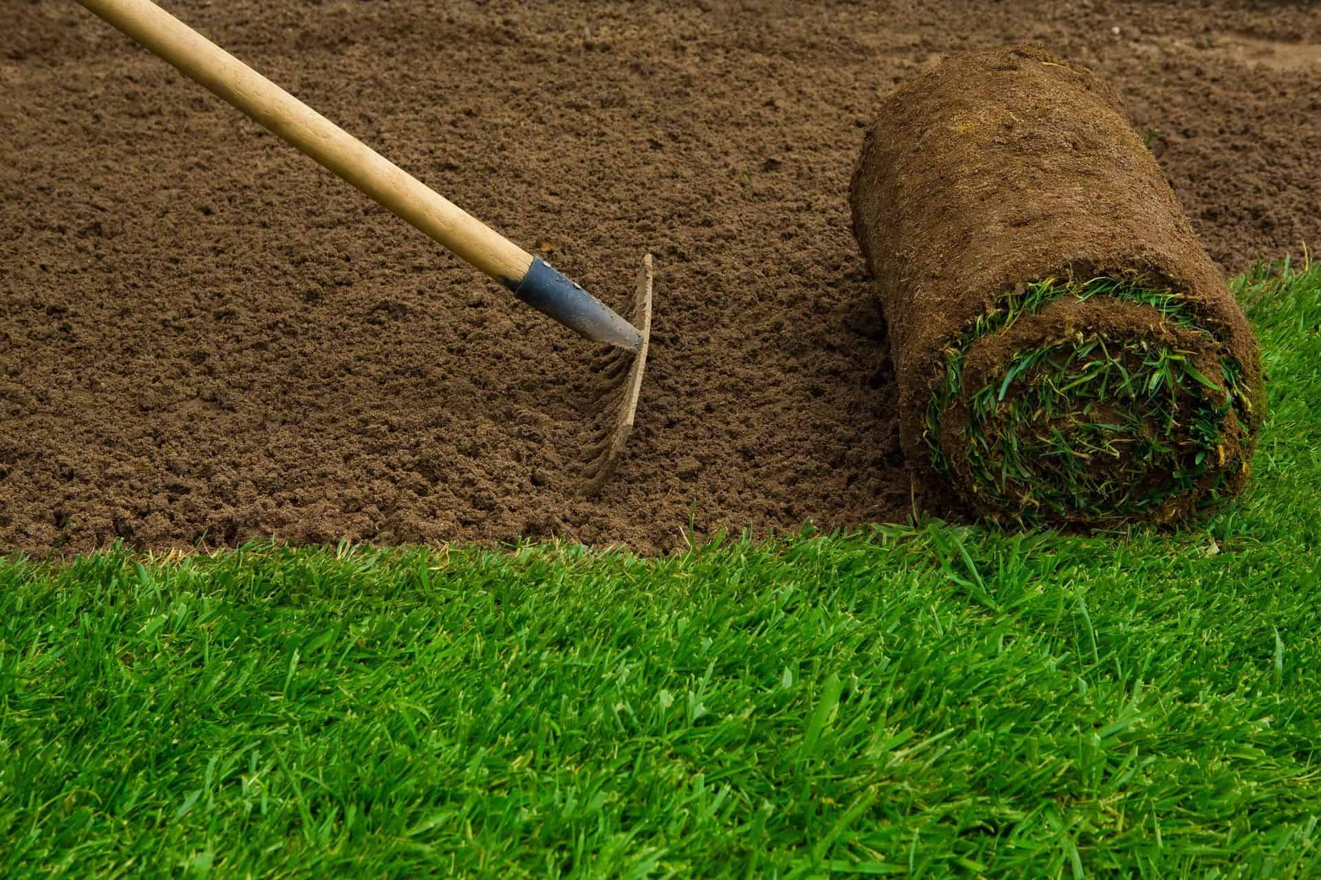 how to fix a bumpy lawn