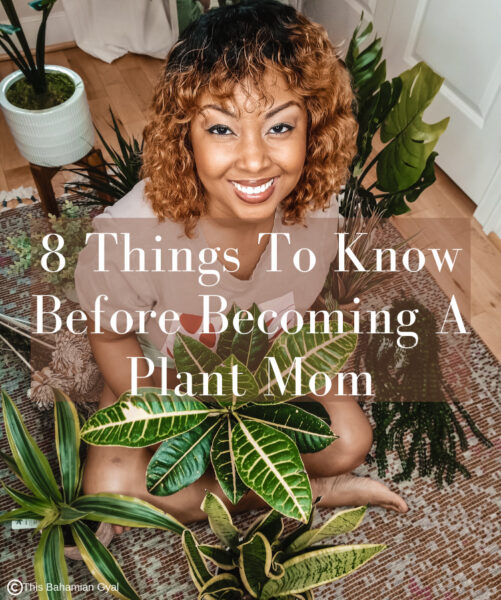 This Bahamian Gyal blogger Rogan Smith poses on the floor with her plants