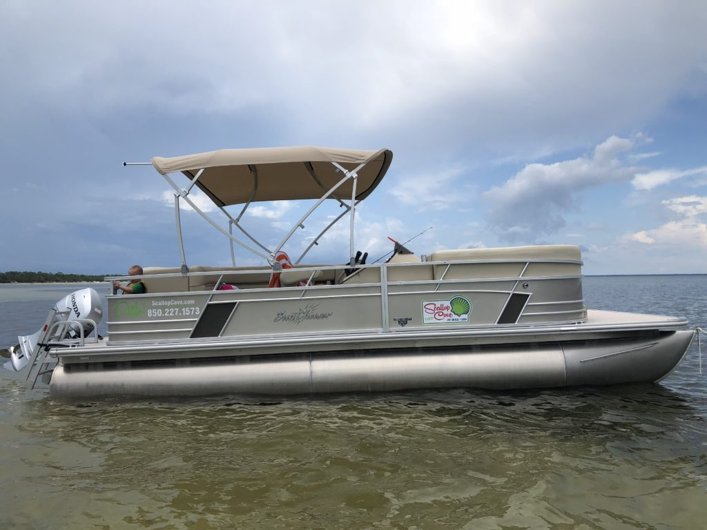 Rental Pontoon boat 2