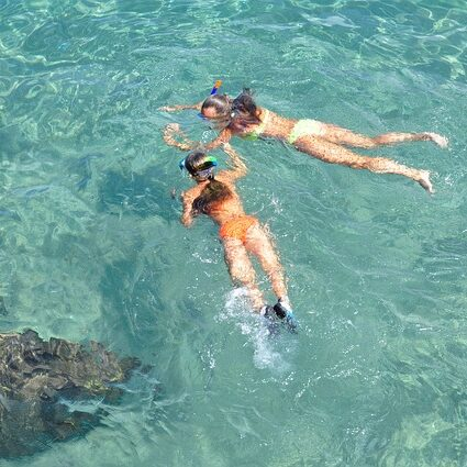how to snorkle