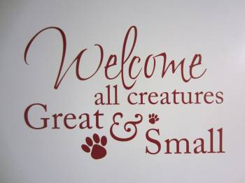 Welcome all animals