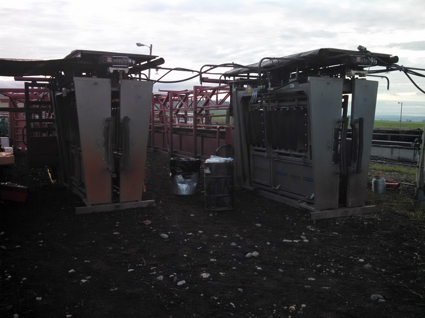 Two Ranch Model Silencer Chutes and Daniels for Breeding Project