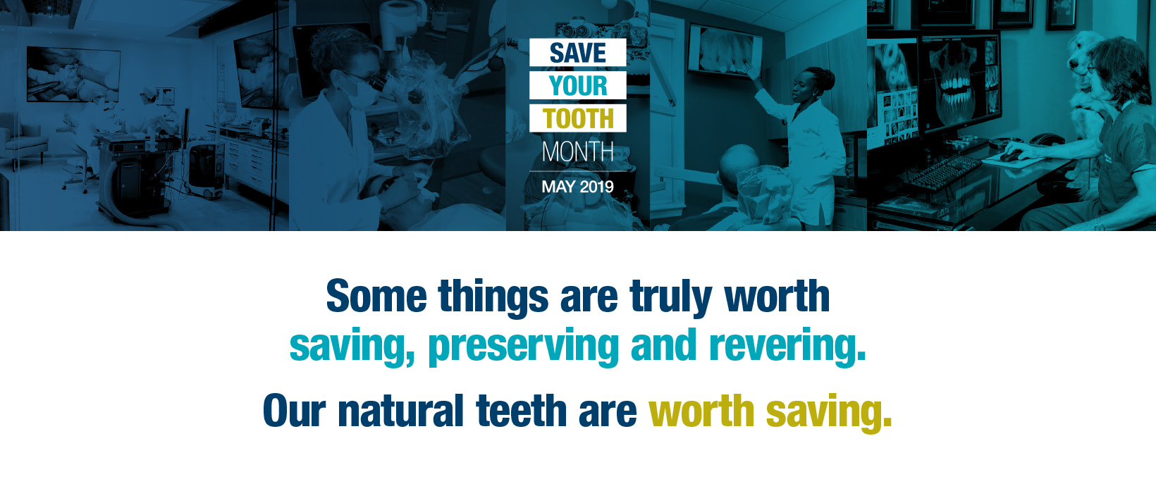 Save Your Tooth Month