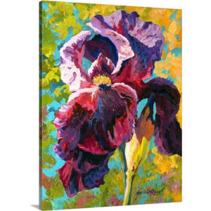 Iris Study by Marion Rose Art Print on Canvas