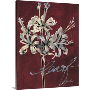 Cabernet Blossoms I by Liz Jardine Art Print on Canvas