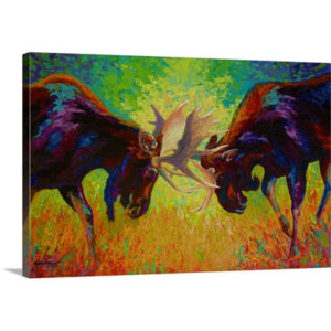Just Sparring Moose by Marion Rose Art Print on Canvas