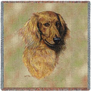 "Brown Longhaired Dachshund Breed Portrait | Throw Blanket | 54"" x 54"""