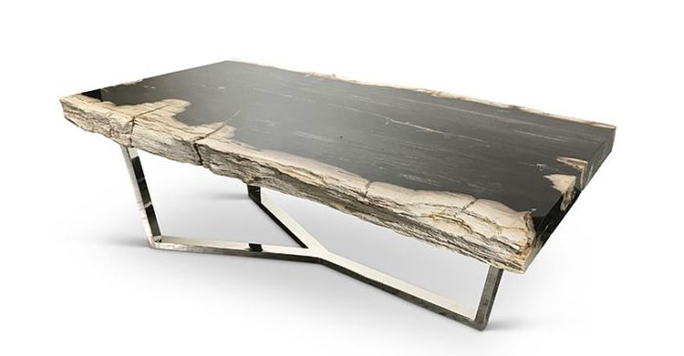 Kailey Masso Natural Edge Petrified Wood Coffee Table