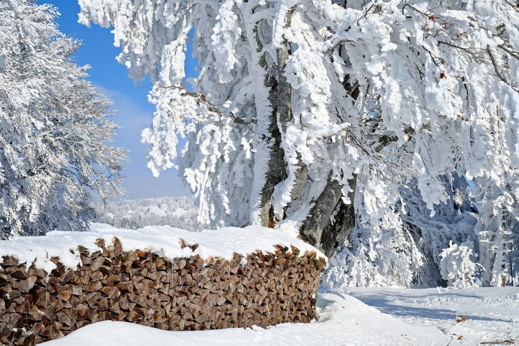 Chopped Wood Under Snow Winter Scene