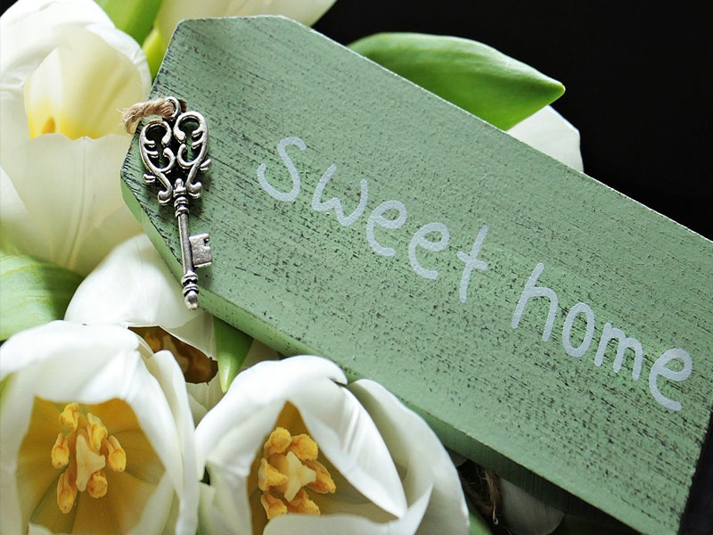 Eco Friendly Tips for Creating a Greener Home