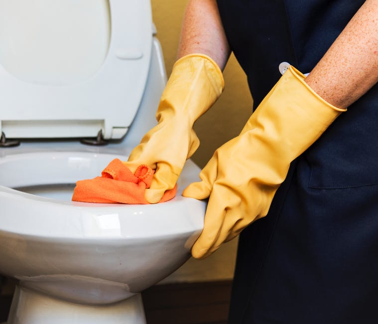 Green Ways to Clean Your Toilet