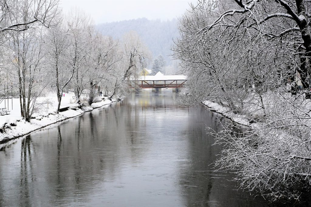 Winter Riverscape