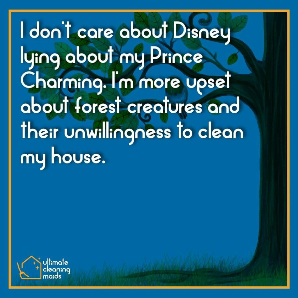 House Cleaning Meme | Disney lied about forest creatures who will clean my house for me