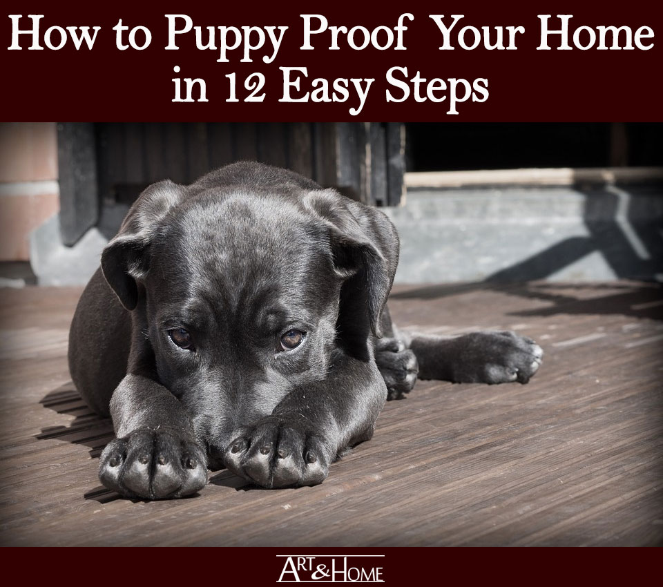 How to Puppy Proof Your Home | Store your Cords