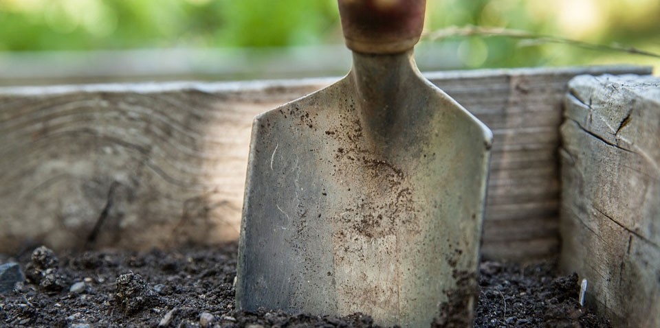 Coffee Grounds for Cleaning Garden Tools