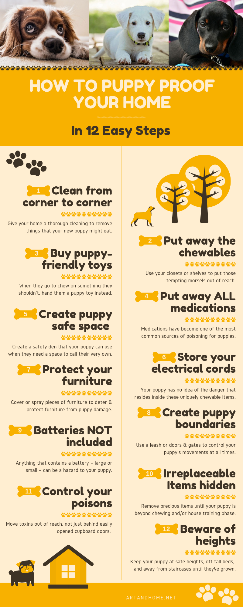 How to Puppy Proof Your Home - an Infographic