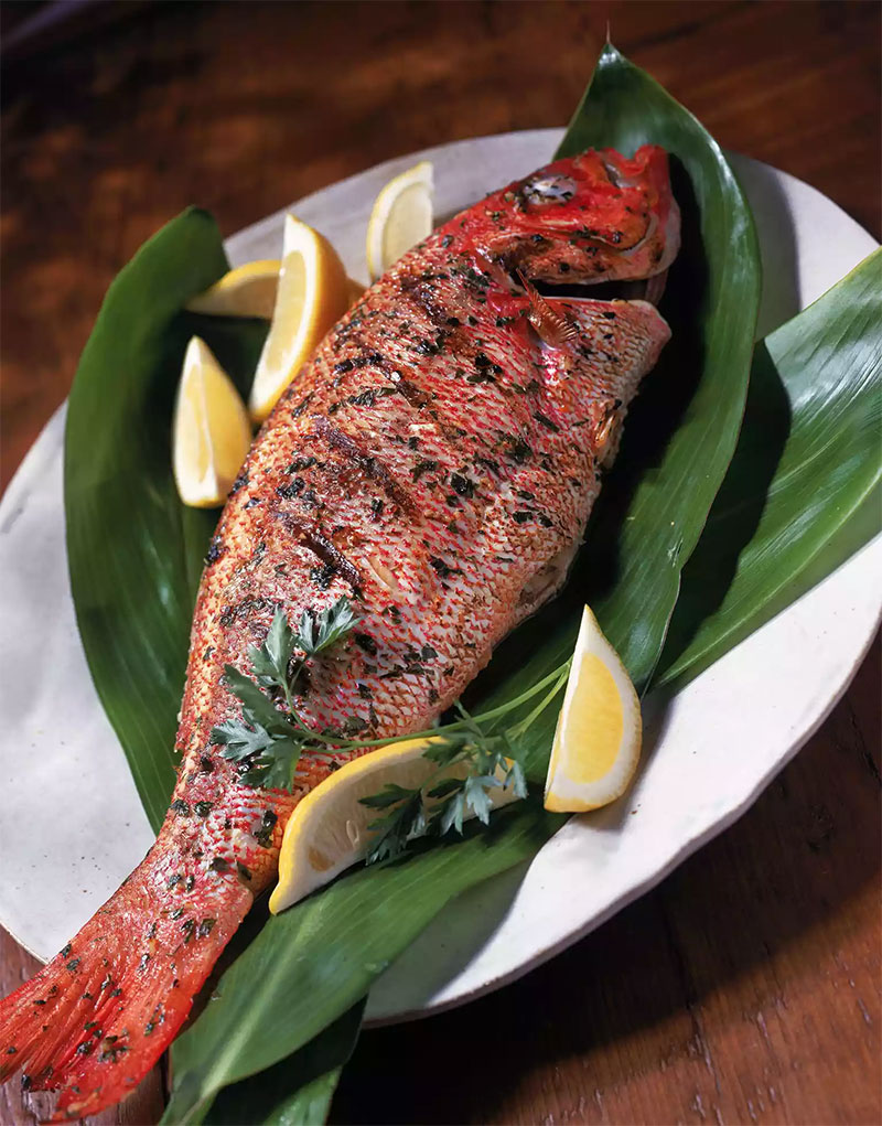 Grilled Mexican Red Snapper