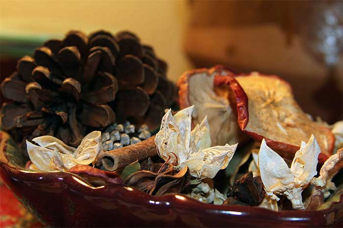 DIY Fall Potpourri Bowl