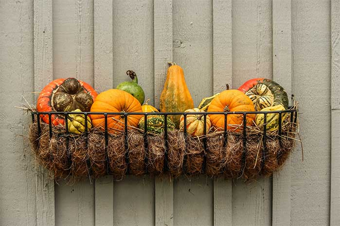 Hanging Basket of Gourds