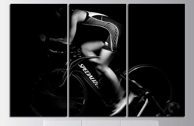 Biker In Motion Canvas Art Set