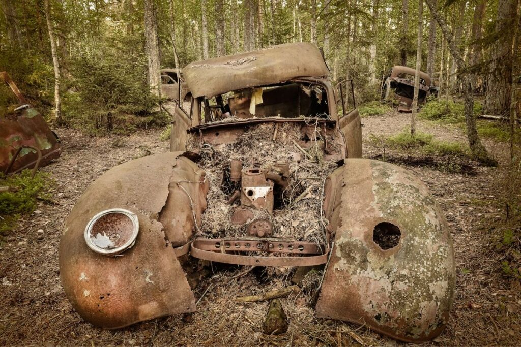 Abandoned Truck in Full Decay