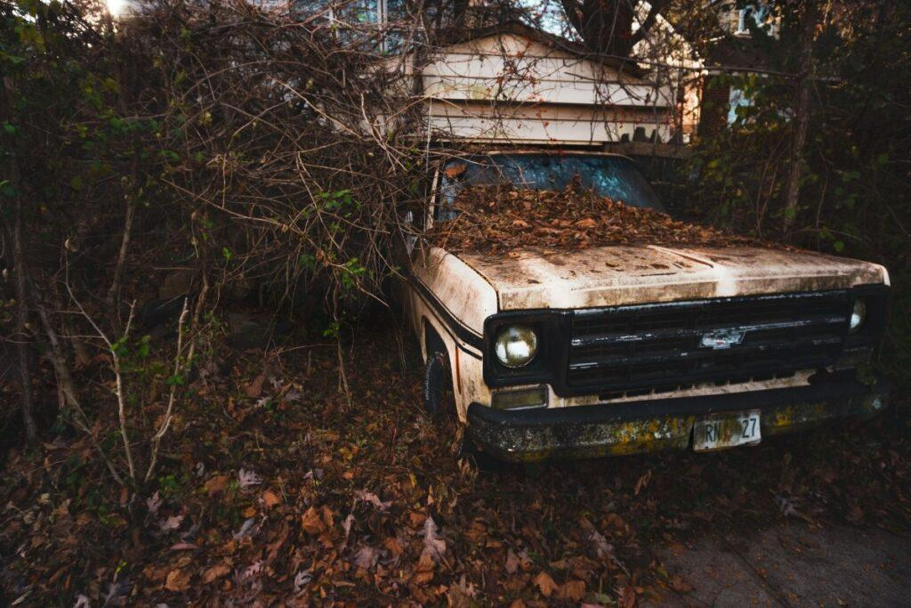 Abandoned and Overgrown Car